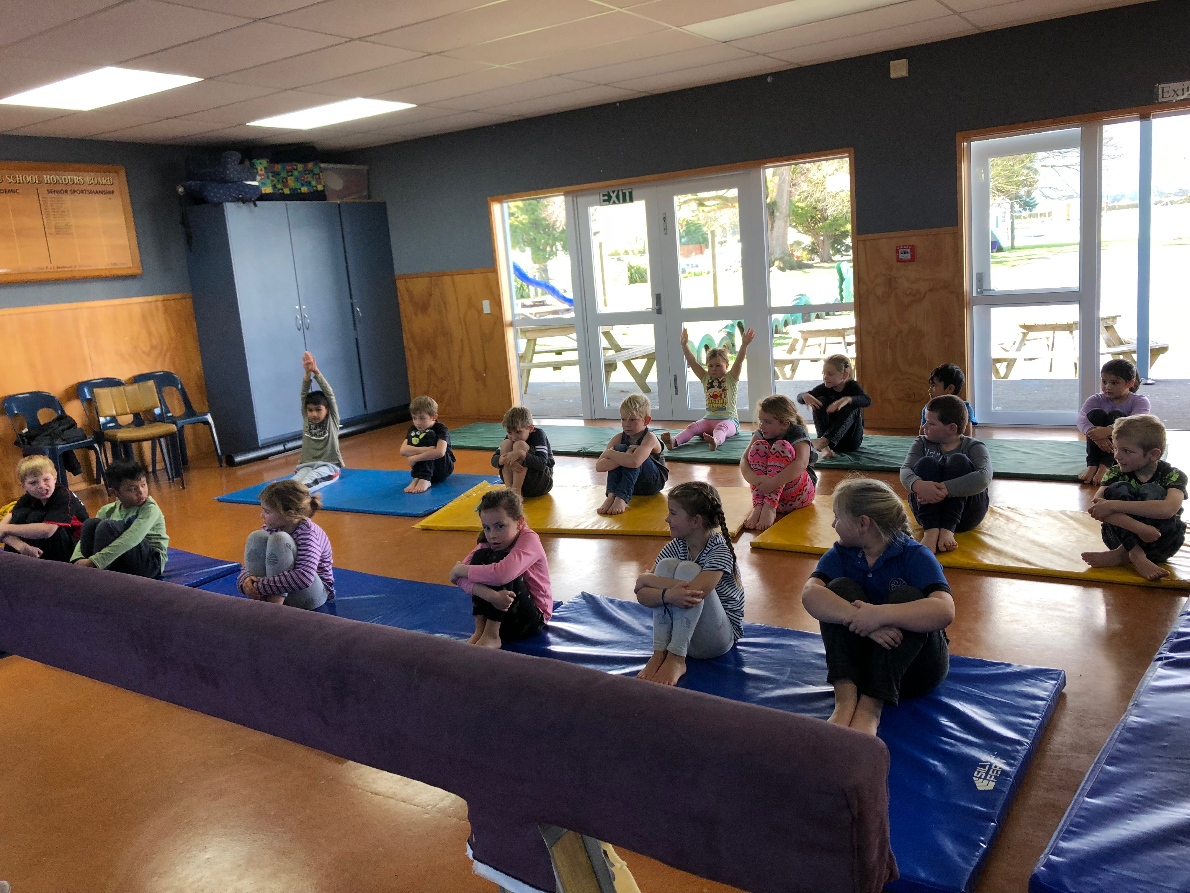 Energize breaking down barriers to gymnastics